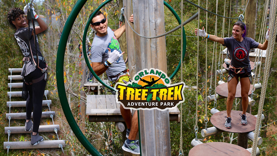 orlando-tree-trek-001.jpg