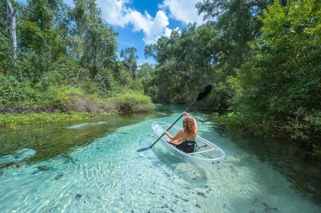 Get Up and Go Kayaking with Clear Kayak Tours